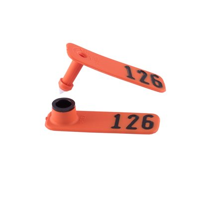 ORANGE SHEEPSTAR COMBO NUMBERED 126-150